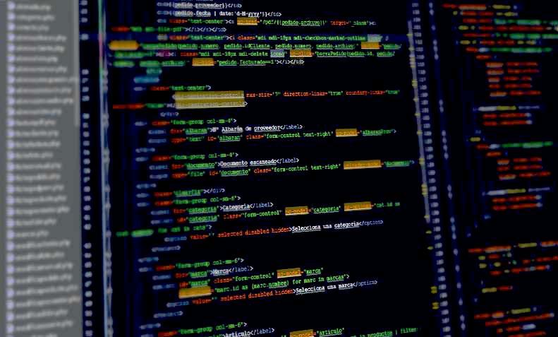 panatalla con desarrollo web